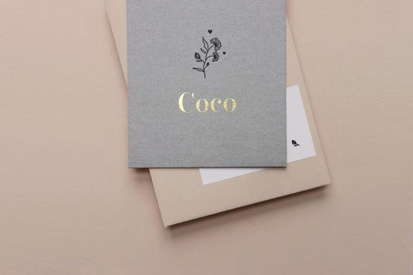 coco_2